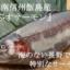 長野県南信州「飯島」産の『アルプスサーモン』