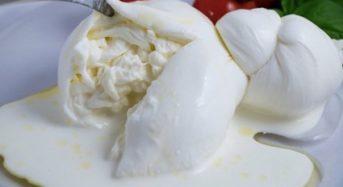 ブラータチーズの特徴とおすすめ。違いを紹介。厳選3選!