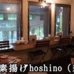 鶏肉を食べるならここ!『鶏の素揚げhoshino』(新宿)