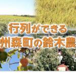 甘いトウモロコシ「甘々娘」・「森の甘太郎」を買える『鈴木農園』