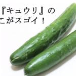 夏野菜 『キュウリ』のここがスゴイ!