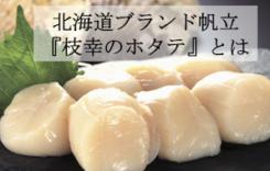逸品食材 『枝幸のホタテ』とは!?