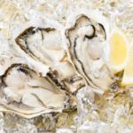 石川県能登産の『岩牡蠣』は夏が旬なんです!!
