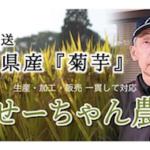 『菊芋』生産・加工・販売 せーちゃん農園