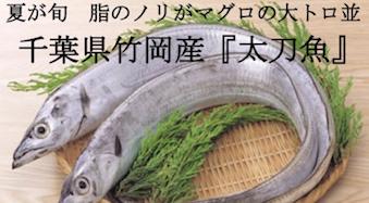 夏が旬!極太肉厚!千葉県竹岡産「太刀魚」