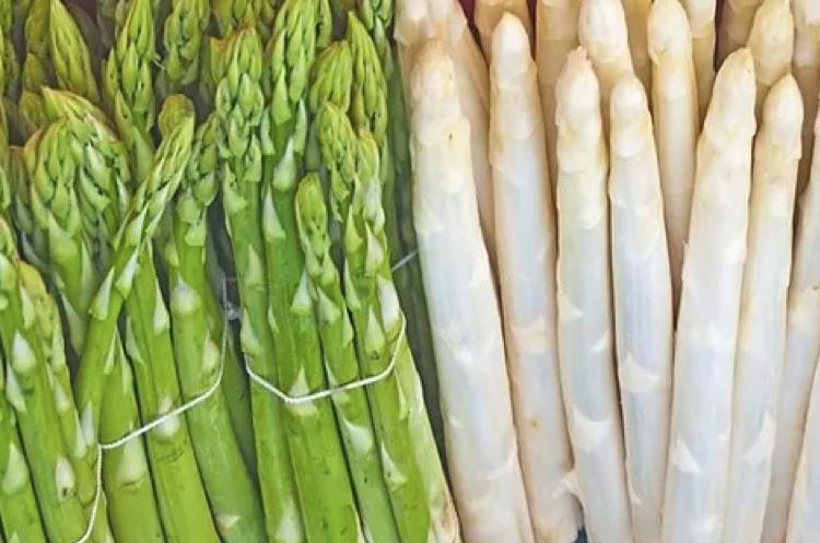 """アスパラの""""グリーン""""と""""ホワイト""""の栄養素の違い"""