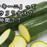 夏野菜 『ズッキーニ』は太いキュウリじゃないよ!