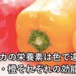 パプリカの栄養素は色で違う!?赤・黄・橙それぞれの効能とは?