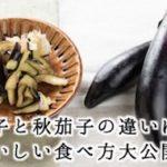 夏茄子と秋茄子の違いは!?おいしい食べ方大公開!