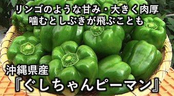 リンゴのような甘み・大きく肉厚 沖縄県産『ぐしちゃんピーマン』