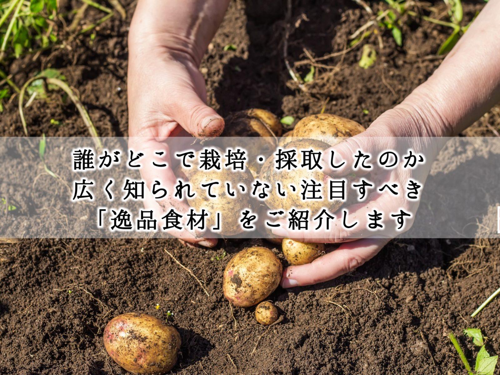 ippintop.syokuzai