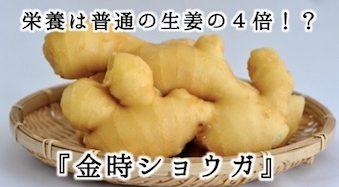 『金時ショウガ』の栄養は普通の生姜の4倍!?