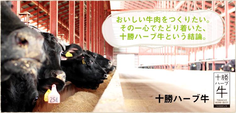 """北海道・十勝の広大な敷地で育つ""""十勝ハーブ牛"""