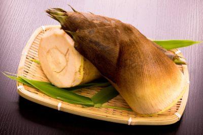 美味しい筍(たけのこ)を選ぶコツは皮の色!?