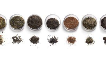 今注目の「和紅茶」とは?その秘密と特徴を探ります!