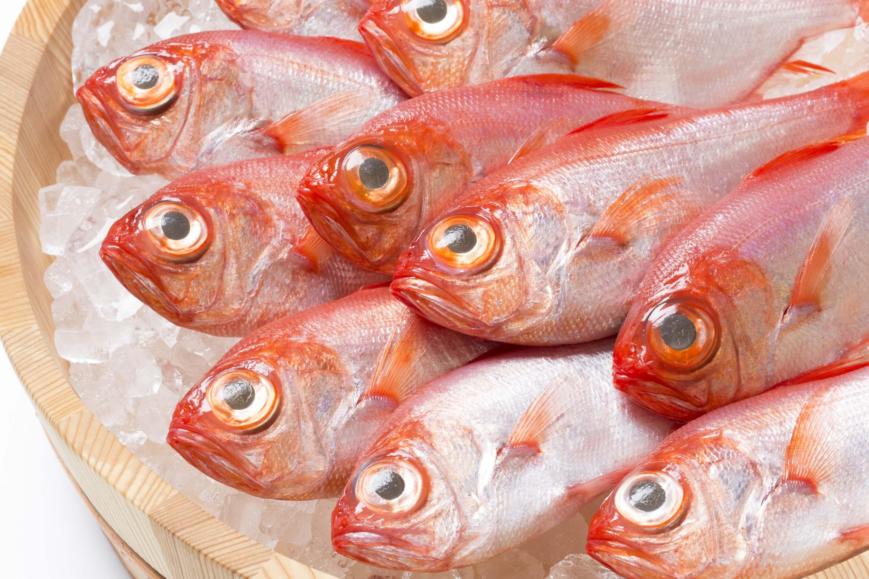 銚子産の金目鯛の魅力