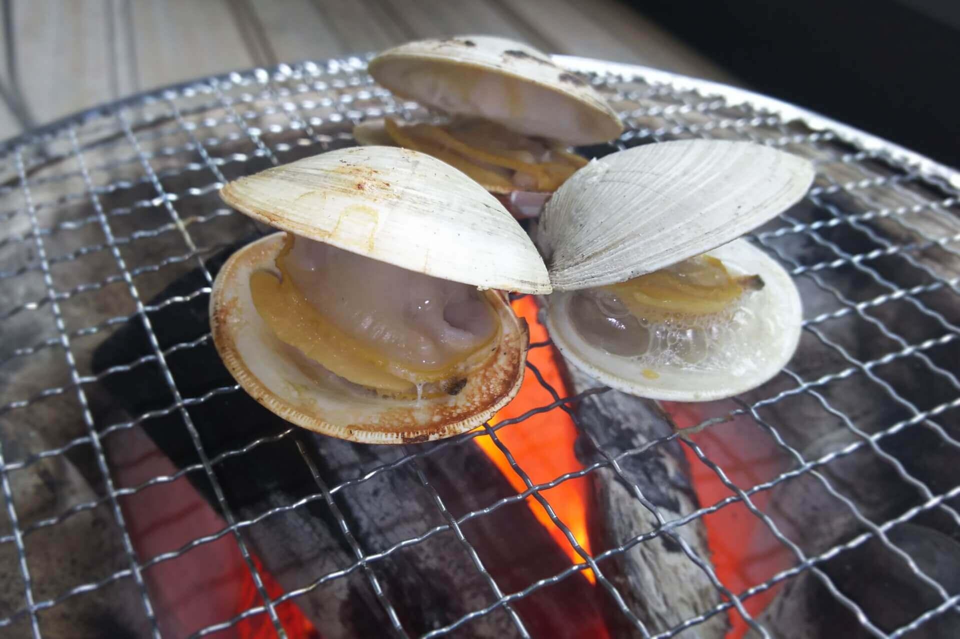 「千葉ブランド水産物」認定。ハマグリを超えるホンビノス貝